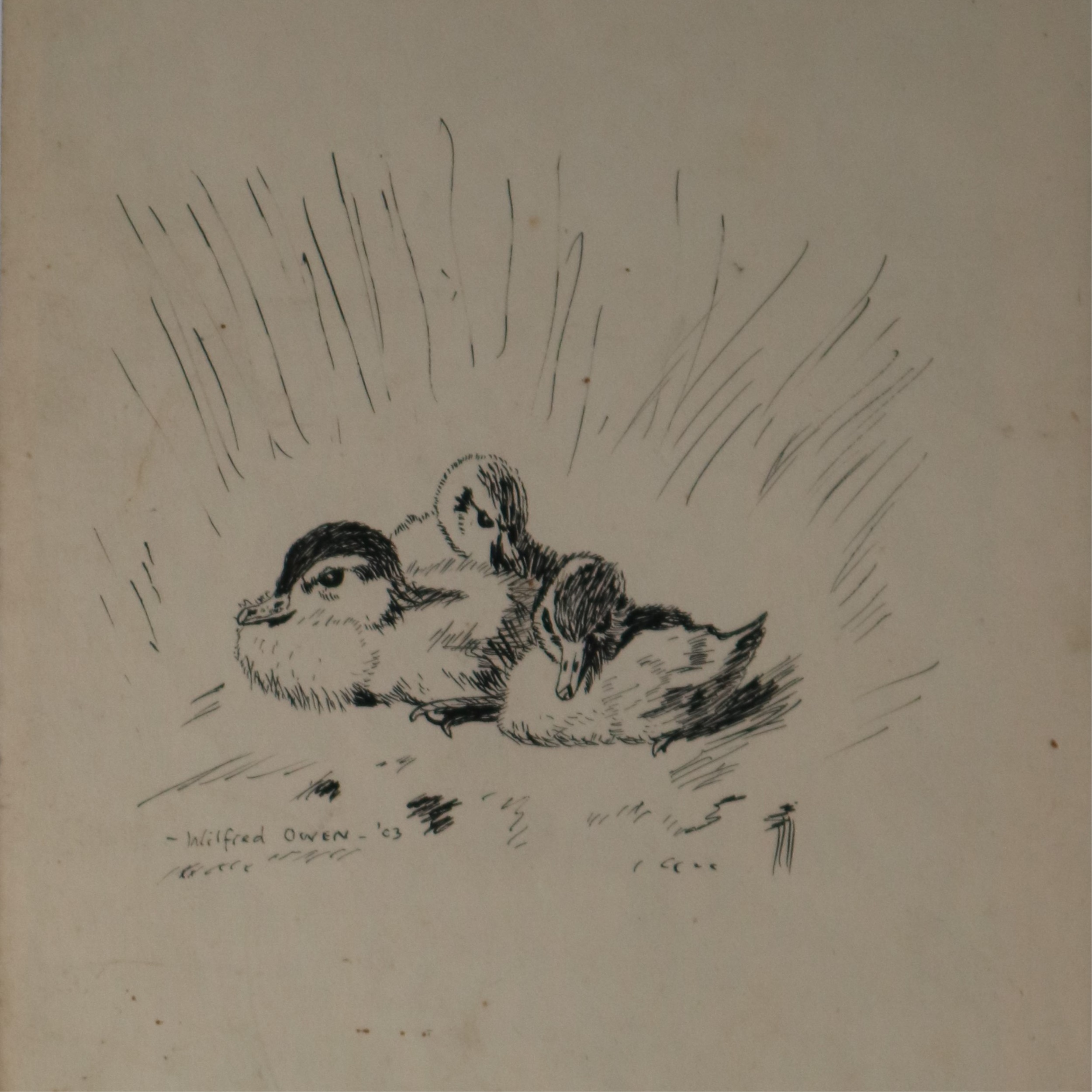 Wilfred Owen (British 1898-1918), Ink Sketch of Three Ducklings