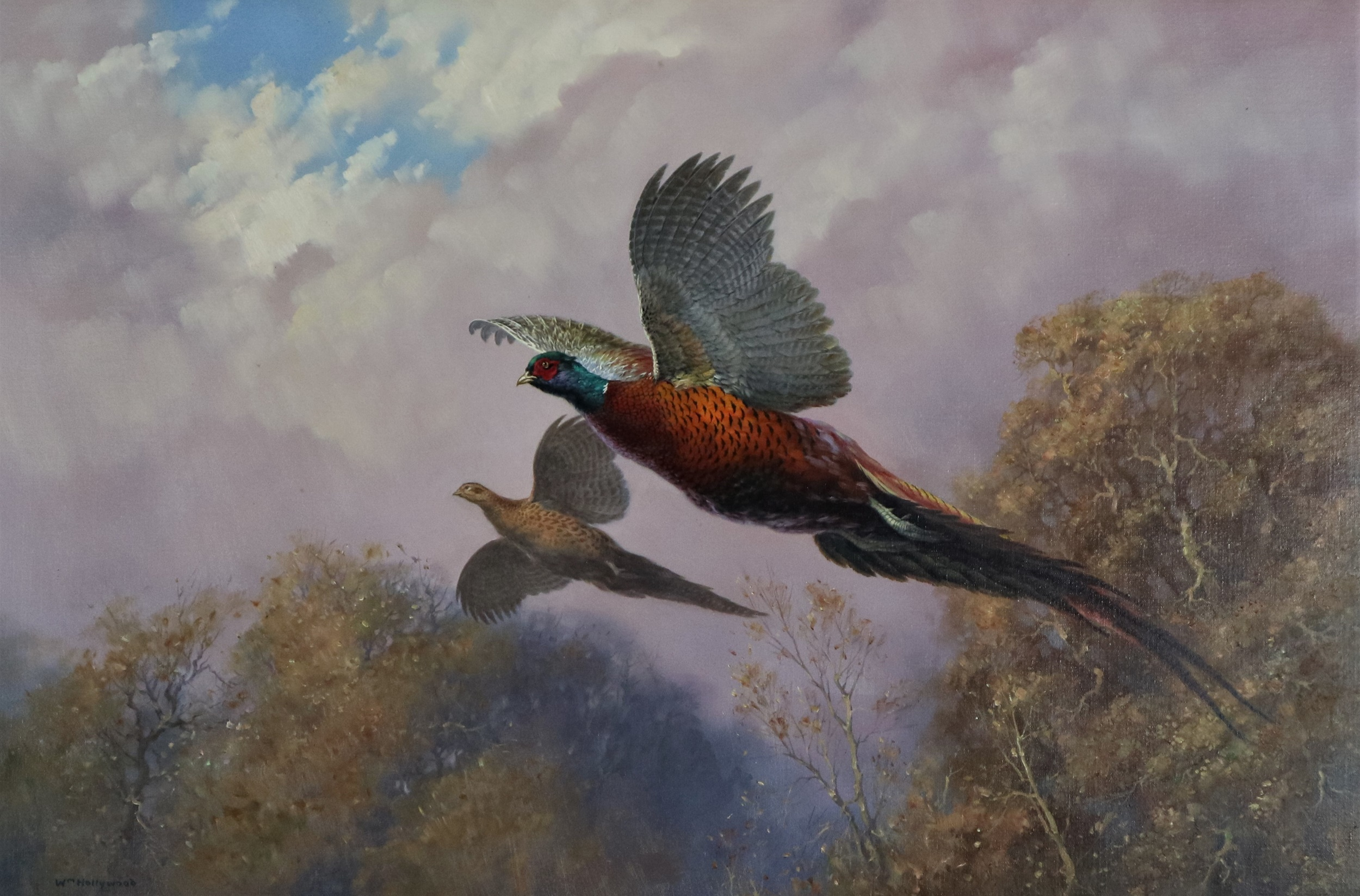 William Hollywood (British 1923-2007) Pheasants in Flight, oil on canvas