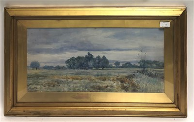 Lot 39-R.W. Fraser, open fields