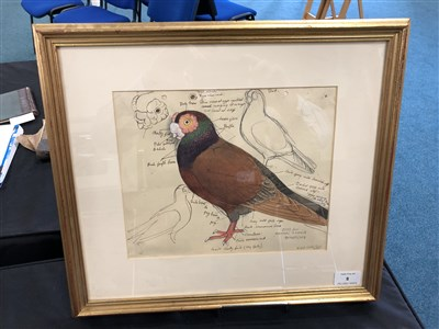 Lot 8-Charles Frederick Tunnicliffe (1901 - 1979), Brown Pigeon