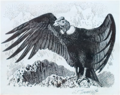 Lot 22-Charles Frederick Tunnicliffe (1901 - 1979), Condor