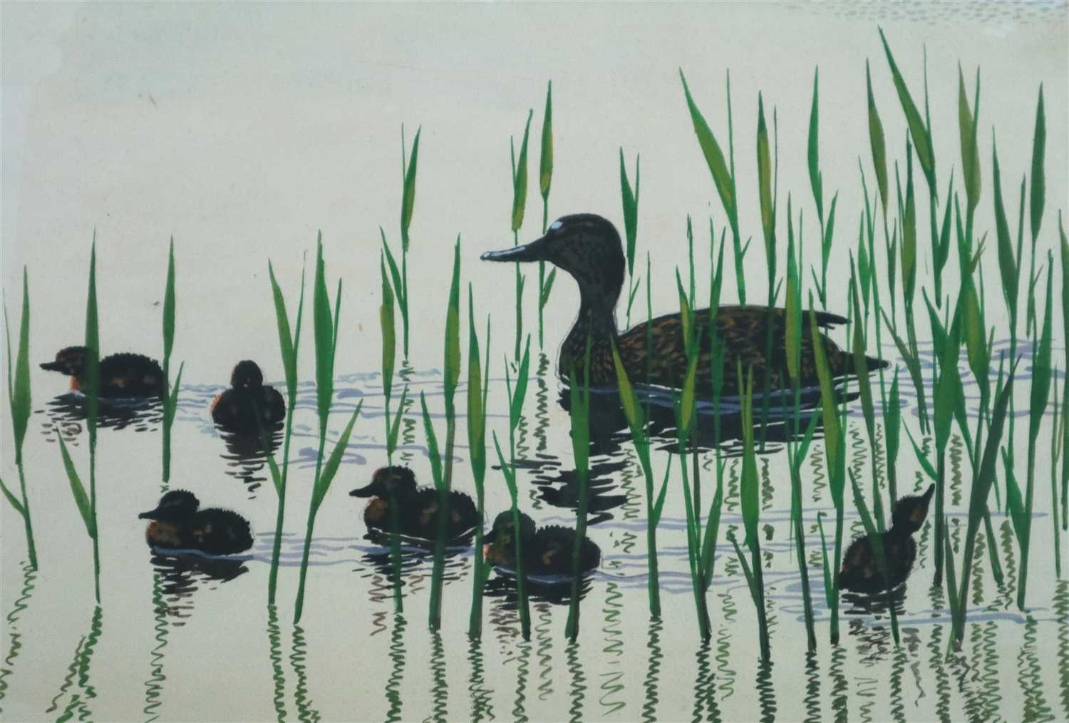 Lot 24-Charles Frederick Tunnicliffe (1901 - 1979), A Mallard with her