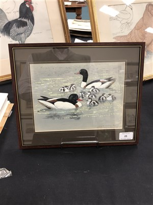 Lot 25-Charles Frederick Tunnicliffe (1901 - 1979), White Ducks