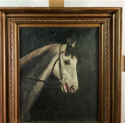 Lot 15-Pair of seascapes and a horse oil