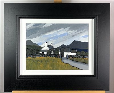 Lot 19-David Barnes, Snowdonia Farm