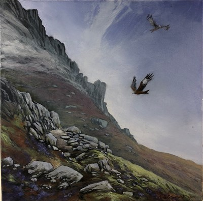 Lot 18-Celia De Grammont (Welsh Contemporary), Red Kites