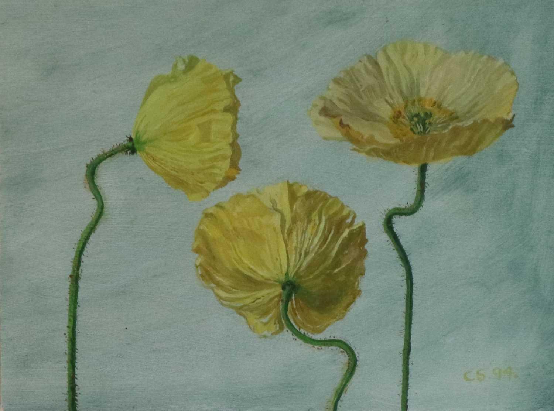 94 - Carolyn Sergeant (British, 1937-2018) Yellow Poppies