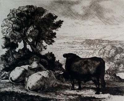 Lot 14 - Charles Frederick Tunnicliffe OBE RA (1901-1979) The Cheshire Plain