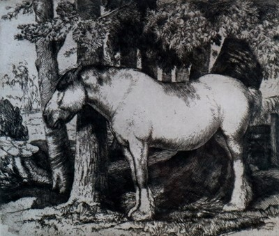 Lot 3 - Charles Frederick Tunnicliffe OBE RA (1901-1979) The White Horse